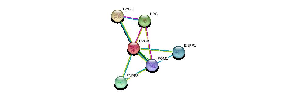 http://string-db.org/version_10/api/image/networkList?limit=0&targetmode=proteins&caller_identity=gene_cards&network_flavor=evidence&identifiers=9606.ENSP00000216962%0d%0a9606.ENSP00000344818%0d%0a9606.ENSP00000360124%0d%0a9606.ENSP00000350265%0d%0a9606.ENSP00000340736%0d%0a9606.ENSP00000354238%0d%0a