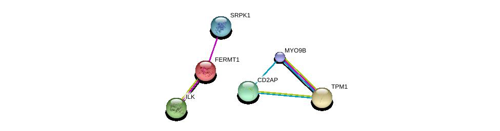 http://string-db.org/version_10/api/image/networkList?limit=0&targetmode=proteins&caller_identity=gene_cards&network_flavor=evidence&identifiers=9606.ENSP00000217289%0d%0a9606.ENSP00000299421%0d%0a9606.ENSP00000362931%0d%0a9606.ENSP00000380444%0d%0a9606.ENSP00000267996%0d%0a9606.ENSP00000352264%0d%0a