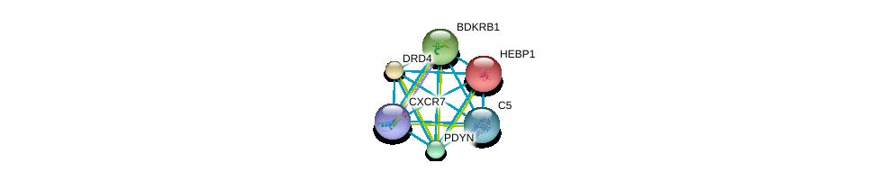 http://string-db.org/version_10/api/image/networkList?limit=0&targetmode=proteins&caller_identity=gene_cards&network_flavor=evidence&identifiers=9606.ENSP00000217305%0d%0a9606.ENSP00000272928%0d%0a9606.ENSP00000014930%0d%0a9606.ENSP00000176183%0d%0a9606.ENSP00000216629%0d%0a9606.ENSP00000223642%0d%0a