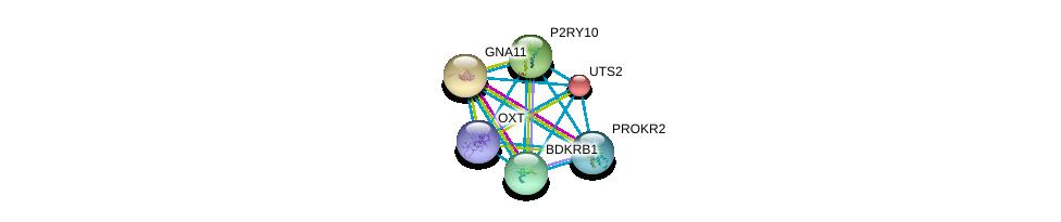 http://string-db.org/version_10/api/image/networkList?limit=0&targetmode=proteins&caller_identity=gene_cards&network_flavor=evidence&identifiers=9606.ENSP00000217386%0d%0a9606.ENSP00000054668%0d%0a9606.ENSP00000078429%0d%0a9606.ENSP00000171757%0d%0a9606.ENSP00000216629%0d%0a9606.ENSP00000217270%0d%0a