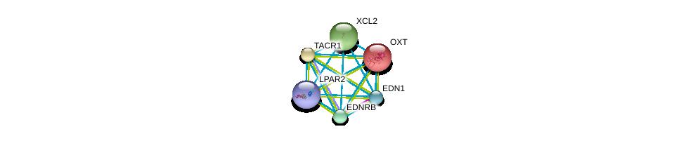 http://string-db.org/version_10/api/image/networkList?limit=0&targetmode=proteins&caller_identity=gene_cards&network_flavor=evidence&identifiers=9606.ENSP00000217386%0d%0a9606.ENSP00000368683%0d%0a9606.ENSP00000366416%0d%0a9606.ENSP00000384665%0d%0a9606.ENSP00000303522%0d%0a9606.ENSP00000356793%0d%0a