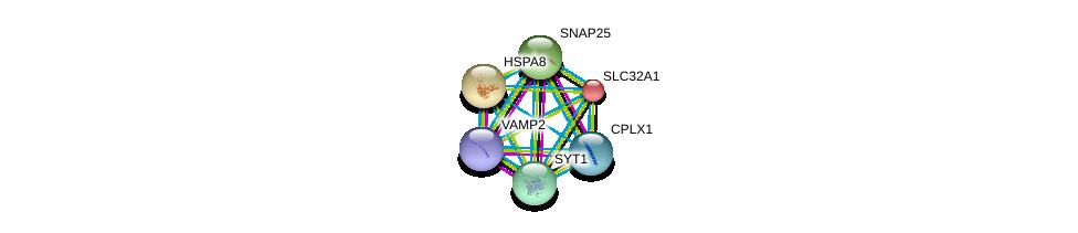 http://string-db.org/version_10/api/image/networkList?limit=0&targetmode=proteins&caller_identity=gene_cards&network_flavor=evidence&identifiers=9606.ENSP00000217420%0d%0a9606.ENSP00000227378%0d%0a9606.ENSP00000254976%0d%0a9606.ENSP00000261205%0d%0a9606.ENSP00000305613%0d%0a9606.ENSP00000314214%0d%0a