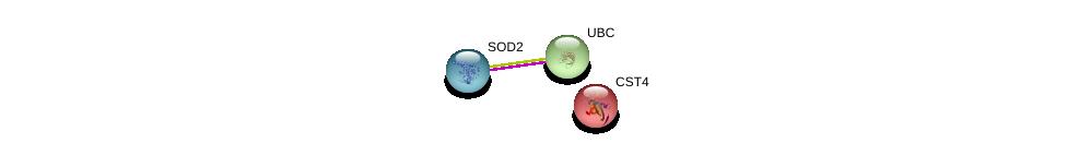 http://string-db.org/version_10/api/image/networkList?limit=0&targetmode=proteins&caller_identity=gene_cards&network_flavor=evidence&identifiers=9606.ENSP00000217423%0d%0a9606.ENSP00000356022%0d%0a9606.ENSP00000344818%0d%0a