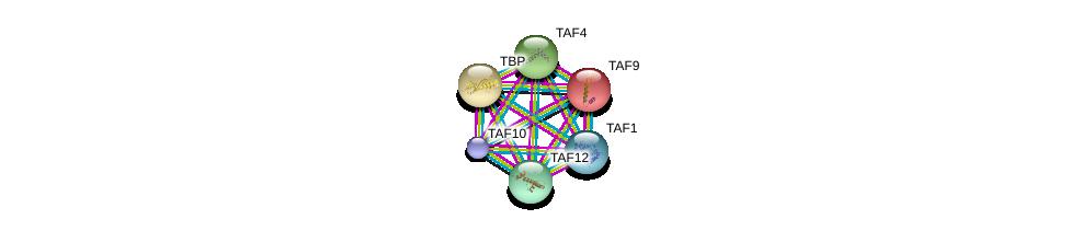 http://string-db.org/version_10/api/image/networkList?limit=0&targetmode=proteins&caller_identity=gene_cards&network_flavor=evidence&identifiers=9606.ENSP00000217893%0d%0a9606.ENSP00000230354%0d%0a9606.ENSP00000252996%0d%0a9606.ENSP00000263974%0d%0a9606.ENSP00000276072%0d%0a9606.ENSP00000299424%0d%0a