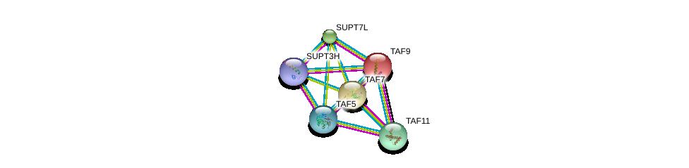 http://string-db.org/version_10/api/image/networkList?limit=0&targetmode=proteins&caller_identity=gene_cards&network_flavor=evidence&identifiers=9606.ENSP00000217893%0d%0a9606.ENSP00000358854%0d%0a9606.ENSP00000354633%0d%0a9606.ENSP00000312709%0d%0a9606.ENSP00000336750%0d%0a9606.ENSP00000360515%0d%0a