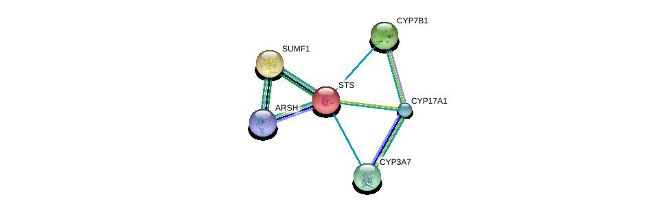 http://string-db.org/version_10/api/image/networkList?limit=0&targetmode=proteins&caller_identity=gene_cards&network_flavor=evidence&identifiers=9606.ENSP00000217961%0d%0a9606.ENSP00000337450%0d%0a9606.ENSP00000310721%0d%0a9606.ENSP00000358903%0d%0a9606.ENSP00000370522%0d%0a9606.ENSP00000272902%0d%0a