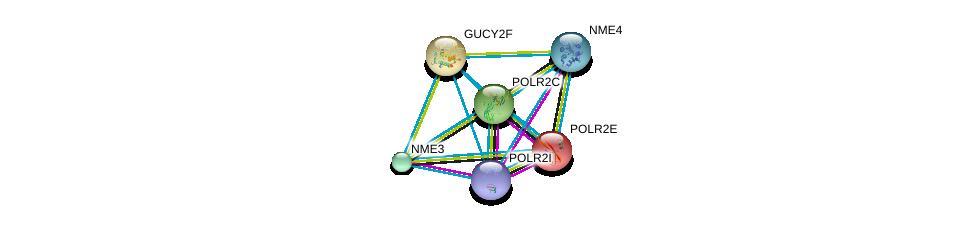 http://string-db.org/version_10/api/image/networkList?limit=0&targetmode=proteins&caller_identity=gene_cards&network_flavor=evidence&identifiers=9606.ENSP00000218006%0d%0a9606.ENSP00000215587%0d%0a9606.ENSP00000219252%0d%0a9606.ENSP00000219302%0d%0a9606.ENSP00000219479%0d%0a9606.ENSP00000221859%0d%0a