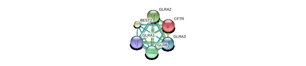 http://string-db.org/version_10/api/image/networkList?limit=0&targetmode=proteins&caller_identity=gene_cards&network_flavor=evidence&identifiers=9606.ENSP00000218075%0d%0a9606.ENSP00000264428%0d%0a9606.ENSP00000274093%0d%0a9606.ENSP00000411593%0d%0a9606.ENSP00000003084%0d%0a9606.ENSP00000042931%0d%0a