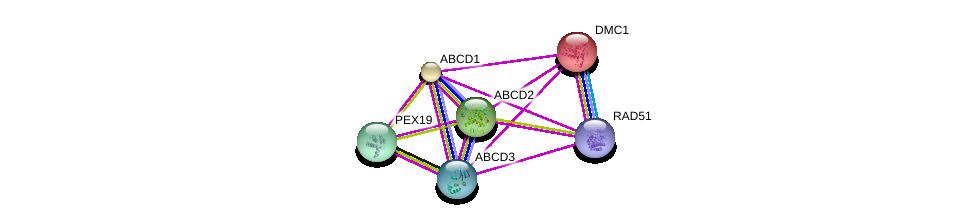 http://string-db.org/version_10/api/image/networkList?limit=0&targetmode=proteins&caller_identity=gene_cards&network_flavor=evidence&identifiers=9606.ENSP00000218104%0d%0a9606.ENSP00000357051%0d%0a9606.ENSP00000310688%0d%0a9606.ENSP00000359233%0d%0a9606.ENSP00000216024%0d%0a9606.ENSP00000372088%0d%0a