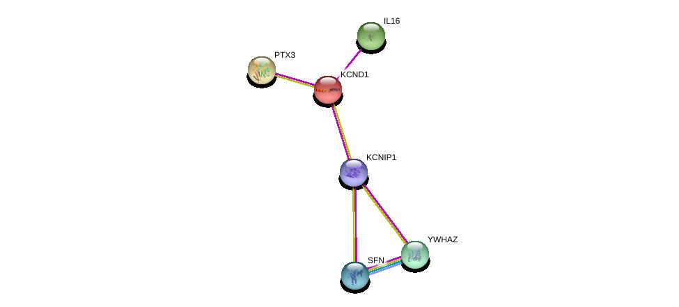 http://string-db.org/version_10/api/image/networkList?limit=0&targetmode=proteins&caller_identity=gene_cards&network_flavor=evidence&identifiers=9606.ENSP00000218176%0d%0a9606.ENSP00000395323%0d%0a9606.ENSP00000302935%0d%0a9606.ENSP00000295927%0d%0a9606.ENSP00000340989%0d%0a9606.ENSP00000309503%0d%0a