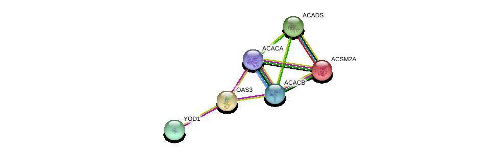 http://string-db.org/version_10/api/image/networkList?limit=0&targetmode=proteins&caller_identity=gene_cards&network_flavor=evidence&identifiers=9606.ENSP00000219054%0d%0a9606.ENSP00000242592%0d%0a9606.ENSP00000341044%0d%0a9606.ENSP00000344789%0d%0a9606.ENSP00000326813%0d%0a9606.ENSP00000228928%0d%0a