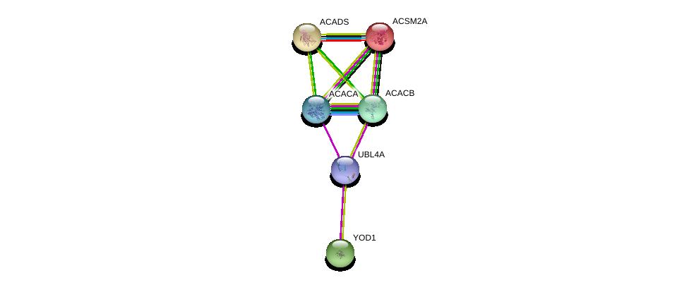 http://string-db.org/version_10/api/image/networkList?limit=0&targetmode=proteins&caller_identity=gene_cards&network_flavor=evidence&identifiers=9606.ENSP00000219054%0d%0a9606.ENSP00000242592%0d%0a9606.ENSP00000344789%0d%0a9606.ENSP00000341044%0d%0a9606.ENSP00000326813%0d%0a9606.ENSP00000358674%0d%0a