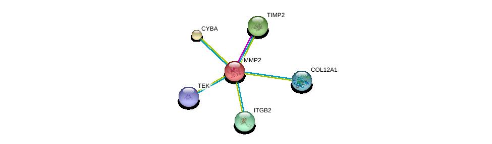 http://string-db.org/version_10/api/image/networkList?limit=0&targetmode=proteins&caller_identity=gene_cards&network_flavor=evidence&identifiers=9606.ENSP00000219070%0d%0a9606.ENSP00000262768%0d%0a9606.ENSP00000369375%0d%0a9606.ENSP00000303242%0d%0a9606.ENSP00000325146%0d%0a9606.ENSP00000261623%0d%0a