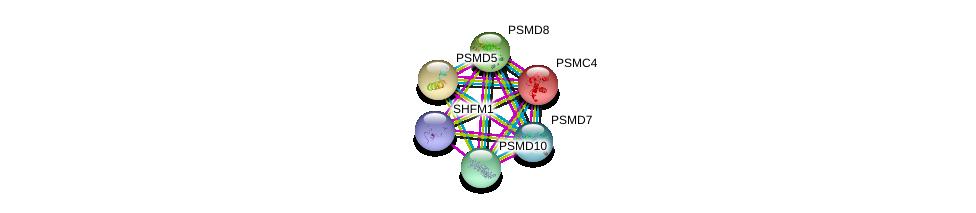 http://string-db.org/version_10/api/image/networkList?limit=0&targetmode=proteins&caller_identity=gene_cards&network_flavor=evidence&identifiers=9606.ENSP00000219313%0d%0a9606.ENSP00000157812%0d%0a9606.ENSP00000210313%0d%0a9606.ENSP00000215071%0d%0a9606.ENSP00000217958%0d%0a9606.ENSP00000248566%0d%0a
