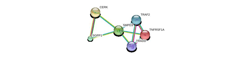 http://string-db.org/version_10/api/image/networkList?limit=0&targetmode=proteins&caller_identity=gene_cards&network_flavor=evidence&identifiers=9606.ENSP00000219334%0d%0a9606.ENSP00000341268%0d%0a9606.ENSP00000162749%0d%0a9606.ENSP00000216264%0d%0a9606.ENSP00000247225%0d%0a9606.ENSP00000247668%0d%0a