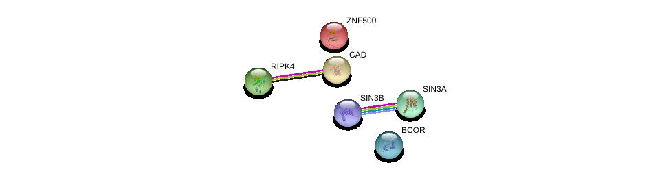http://string-db.org/version_10/api/image/networkList?limit=0&targetmode=proteins&caller_identity=gene_cards&network_flavor=evidence&identifiers=9606.ENSP00000219478%0d%0a9606.ENSP00000369131%0d%0a9606.ENSP00000353622%0d%0a9606.ENSP00000367705%0d%0a9606.ENSP00000264705%0d%0a9606.ENSP00000332454%0d%0a