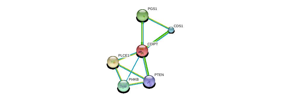 http://string-db.org/version_10/api/image/networkList?limit=0&targetmode=proteins&caller_identity=gene_cards&network_flavor=evidence&identifiers=9606.ENSP00000219789%0d%0a9606.ENSP00000361021%0d%0a9606.ENSP00000260766%0d%0a9606.ENSP00000271657%0d%0a9606.ENSP00000295887%0d%0a9606.ENSP00000262764%0d%0a