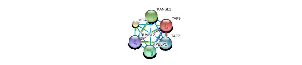 http://string-db.org/version_10/api/image/networkList?limit=0&targetmode=proteins&caller_identity=gene_cards&network_flavor=evidence&identifiers=9606.ENSP00000219905%0d%0a9606.ENSP00000301396%0d%0a9606.ENSP00000217893%0d%0a9606.ENSP00000312709%0d%0a9606.ENSP00000262419%0d%0a9606.ENSP00000473172%0d%0a