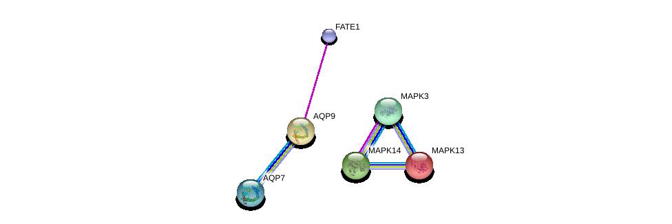 http://string-db.org/version_10/api/image/networkList?limit=0&targetmode=proteins&caller_identity=gene_cards&network_flavor=evidence&identifiers=9606.ENSP00000219919%0d%0a9606.ENSP00000297988%0d%0a9606.ENSP00000359375%0d%0a9606.ENSP00000211287%0d%0a9606.ENSP00000229794%0d%0a9606.ENSP00000263025%0d%0a