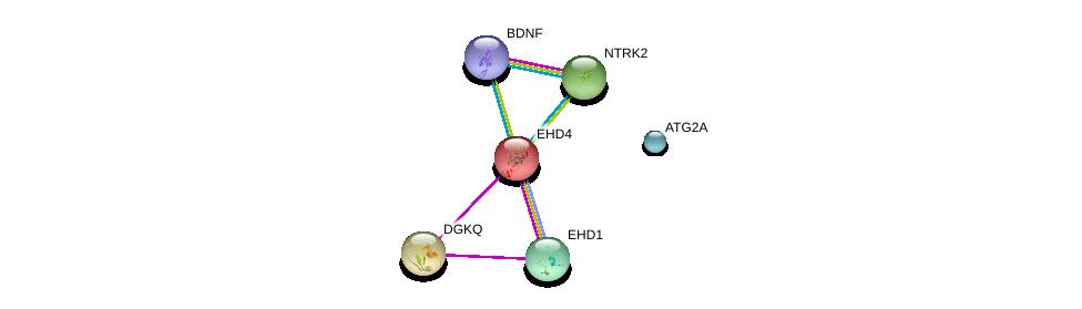 http://string-db.org/version_10/api/image/networkList?limit=0&targetmode=proteins&caller_identity=gene_cards&network_flavor=evidence&identifiers=9606.ENSP00000220325%0d%0a9606.ENSP00000414303%0d%0a9606.ENSP00000277120%0d%0a9606.ENSP00000273814%0d%0a9606.ENSP00000320516%0d%0a9606.ENSP00000366475%0d%0a