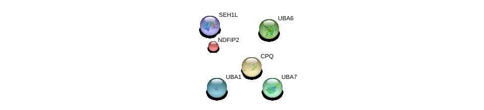 http://string-db.org/version_10/api/image/networkList?limit=0&targetmode=proteins&caller_identity=gene_cards&network_flavor=evidence&identifiers=9606.ENSP00000220763%0d%0a9606.ENSP00000313454%0d%0a9606.ENSP00000333266%0d%0a9606.ENSP00000338413%0d%0a9606.ENSP00000382779%0d%0a9606.ENSP00000218652%0d%0a