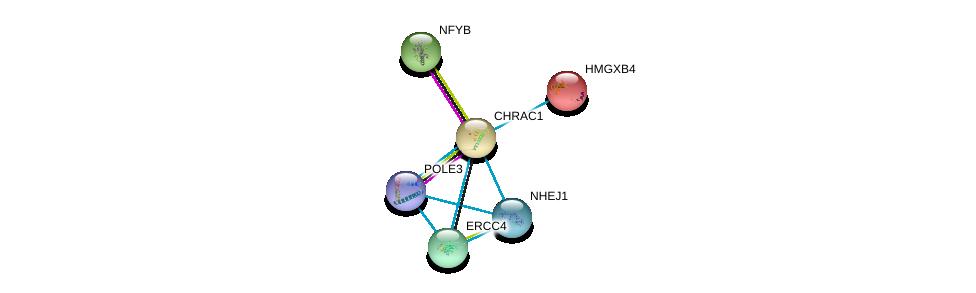 http://string-db.org/version_10/api/image/networkList?limit=0&targetmode=proteins&caller_identity=gene_cards&network_flavor=evidence&identifiers=9606.ENSP00000220913%0d%0a9606.ENSP00000363284%0d%0a9606.ENSP00000240055%0d%0a9606.ENSP00000310520%0d%0a9606.ENSP00000216106%0d%0a9606.ENSP00000349313%0d%0a
