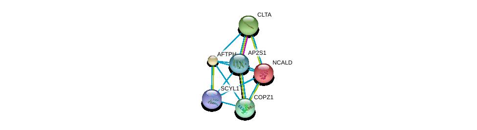 http://string-db.org/version_10/api/image/networkList?limit=0&targetmode=proteins&caller_identity=gene_cards&network_flavor=evidence&identifiers=9606.ENSP00000220931%0d%0a9606.ENSP00000238855%0d%0a9606.ENSP00000242285%0d%0a9606.ENSP00000262061%0d%0a9606.ENSP00000263270%0d%0a9606.ENSP00000270176%0d%0a