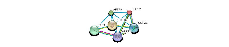 http://string-db.org/version_10/api/image/networkList?limit=0&targetmode=proteins&caller_identity=gene_cards&network_flavor=evidence&identifiers=9606.ENSP00000220931%0d%0a9606.ENSP00000242285%0d%0a9606.ENSP00000262061%0d%0a9606.ENSP00000006101%0d%0a9606.ENSP00000238855%0d%0a9606.ENSP00000263270%0d%0a