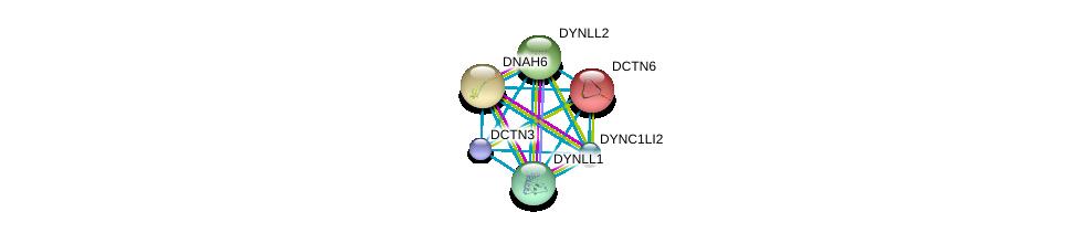 http://string-db.org/version_10/api/image/networkList?limit=0&targetmode=proteins&caller_identity=gene_cards&network_flavor=evidence&identifiers=9606.ENSP00000221114%0d%0a9606.ENSP00000237449%0d%0a9606.ENSP00000240343%0d%0a9606.ENSP00000242577%0d%0a9606.ENSP00000258198%0d%0a9606.ENSP00000259632%0d%0a