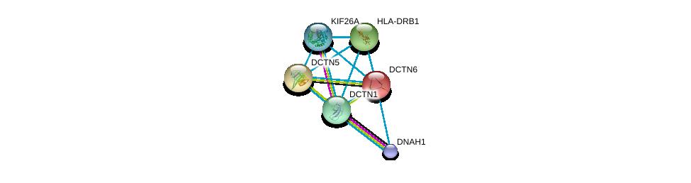 http://string-db.org/version_10/api/image/networkList?limit=0&targetmode=proteins&caller_identity=gene_cards&network_flavor=evidence&identifiers=9606.ENSP00000221114%0d%0a9606.ENSP00000354791%0d%0a9606.ENSP00000353099%0d%0a9606.ENSP00000300087%0d%0a9606.ENSP00000401514%0d%0a9606.ENSP00000388241%0d%0a