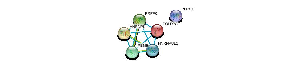 http://string-db.org/version_10/api/image/networkList?limit=0&targetmode=proteins&caller_identity=gene_cards&network_flavor=evidence&identifiers=9606.ENSP00000221419%0d%0a9606.ENSP00000219252%0d%0a9606.ENSP00000424417%0d%0a9606.ENSP00000266079%0d%0a9606.ENSP00000375863%0d%0a9606.ENSP00000343054%0d%0a