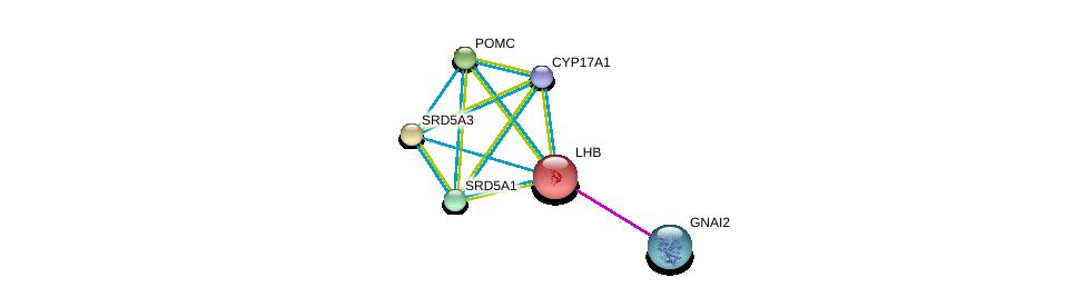http://string-db.org/version_10/api/image/networkList?limit=0&targetmode=proteins&caller_identity=gene_cards&network_flavor=evidence&identifiers=9606.ENSP00000221421%0d%0a9606.ENSP00000264708%0d%0a9606.ENSP00000358903%0d%0a9606.ENSP00000274192%0d%0a9606.ENSP00000264228%0d%0a9606.ENSP00000312999%0d%0a