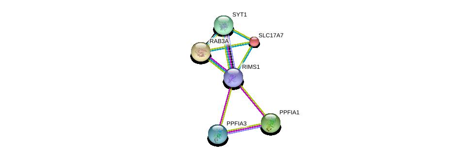 http://string-db.org/version_10/api/image/networkList?limit=0&targetmode=proteins&caller_identity=gene_cards&network_flavor=evidence&identifiers=9606.ENSP00000221485%0d%0a9606.ENSP00000253925%0d%0a9606.ENSP00000335614%0d%0a9606.ENSP00000428417%0d%0a9606.ENSP00000261205%0d%0a9606.ENSP00000222256%0d%0a
