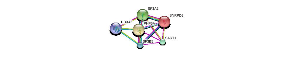http://string-db.org/version_10/api/image/networkList?limit=0&targetmode=proteins&caller_identity=gene_cards&network_flavor=evidence&identifiers=9606.ENSP00000221494%0d%0a9606.ENSP00000310448%0d%0a9606.ENSP00000374574%0d%0a9606.ENSP00000356541%0d%0a9606.ENSP00000216252%0d%0a9606.ENSP00000215829%0d%0a