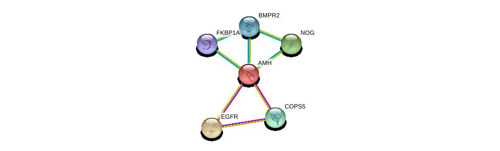 http://string-db.org/version_10/api/image/networkList?limit=0&targetmode=proteins&caller_identity=gene_cards&network_flavor=evidence&identifiers=9606.ENSP00000221496%0d%0a9606.ENSP00000371138%0d%0a9606.ENSP00000328181%0d%0a9606.ENSP00000363708%0d%0a9606.ENSP00000275493%0d%0a9606.ENSP00000350512%0d%0a