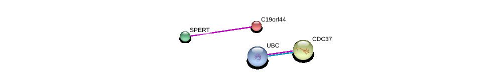 http://string-db.org/version_10/api/image/networkList?limit=0&targetmode=proteins&caller_identity=gene_cards&network_flavor=evidence&identifiers=9606.ENSP00000221671%0d%0a9606.ENSP00000309189%0d%0a9606.ENSP00000344818%0d%0a9606.ENSP00000222005%0d%0a9606.ENSP00000222005%0d%0a