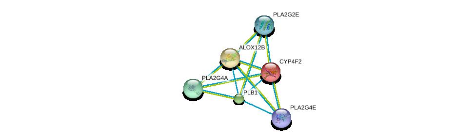 http://string-db.org/version_10/api/image/networkList?limit=0&targetmode=proteins&caller_identity=gene_cards&network_flavor=evidence&identifiers=9606.ENSP00000221700%0d%0a9606.ENSP00000330442%0d%0a9606.ENSP00000364257%0d%0a9606.ENSP00000315167%0d%0a9606.ENSP00000356436%0d%0a9606.ENSP00000382434%0d%0a
