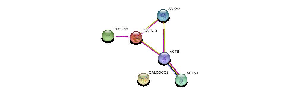 http://string-db.org/version_10/api/image/networkList?limit=0&targetmode=proteins&caller_identity=gene_cards&network_flavor=evidence&identifiers=9606.ENSP00000221797%0d%0a9606.ENSP00000331514%0d%0a9606.ENSP00000349960%0d%0a9606.ENSP00000346032%0d%0a9606.ENSP00000298838%0d%0a9606.ENSP00000258947%0d%0a