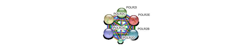 http://string-db.org/version_10/api/image/networkList?limit=0&targetmode=proteins&caller_identity=gene_cards&network_flavor=evidence&identifiers=9606.ENSP00000221859%0d%0a9606.ENSP00000219252%0d%0a9606.ENSP00000215587%0d%0a9606.ENSP00000272645%0d%0a9606.ENSP00000314949%0d%0a9606.ENSP00000312735%0d%0a