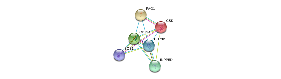 http://string-db.org/version_10/api/image/networkList?limit=0&targetmode=proteins&caller_identity=gene_cards&network_flavor=evidence&identifiers=9606.ENSP00000221972%0d%0a9606.ENSP00000376544%0d%0a9606.ENSP00000352575%0d%0a9606.ENSP00000384675%0d%0a9606.ENSP00000220003%0d%0a9606.ENSP00000220597%0d%0a