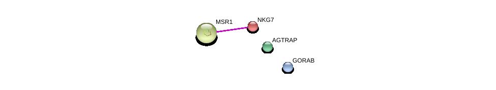 http://string-db.org/version_10/api/image/networkList?limit=0&targetmode=proteins&caller_identity=gene_cards&network_flavor=evidence&identifiers=9606.ENSP00000221978%0d%0a9606.ENSP00000262101%0d%0a9606.ENSP00000319713%0d%0a9606.ENSP00000356737%0d%0a
