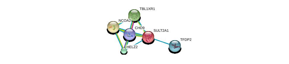 http://string-db.org/version_10/api/image/networkList?limit=0&targetmode=proteins&caller_identity=gene_cards&network_flavor=evidence&identifiers=9606.ENSP00000222002%0d%0a9606.ENSP00000455307%0d%0a9606.ENSP00000420616%0d%0a9606.ENSP00000417401%0d%0a9606.ENSP00000405574%0d%0a9606.ENSP00000399968%0d%0a