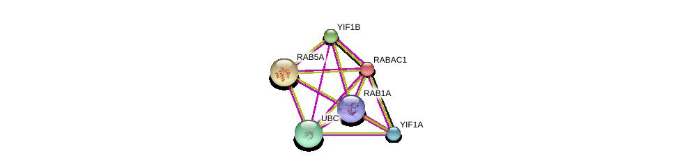 http://string-db.org/version_10/api/image/networkList?limit=0&targetmode=proteins&caller_identity=gene_cards&network_flavor=evidence&identifiers=9606.ENSP00000222008%0d%0a9606.ENSP00000344818%0d%0a9606.ENSP00000387286%0d%0a9606.ENSP00000366098%0d%0a9606.ENSP00000273047%0d%0a9606.ENSP00000343435%0d%0a