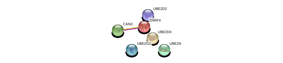 http://string-db.org/version_10/api/image/networkList?limit=0&targetmode=proteins&caller_identity=gene_cards&network_flavor=evidence&identifiers=9606.ENSP00000222033%0d%0a9606.ENSP00000247461%0d%0a9606.ENSP00000316176%0d%0a9606.ENSP00000381717%0d%0a9606.ENSP00000338348%0d%0a9606.ENSP00000222402%0d%0a
