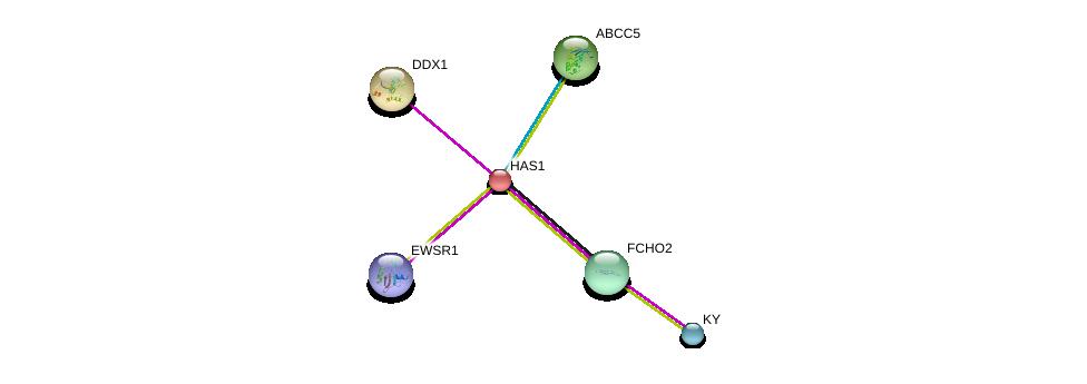 http://string-db.org/version_10/api/image/networkList?limit=0&targetmode=proteins&caller_identity=gene_cards&network_flavor=evidence&identifiers=9606.ENSP00000222115%0d%0a9606.ENSP00000333926%0d%0a9606.ENSP00000400142%0d%0a9606.ENSP00000233084%0d%0a9606.ENSP00000397598%0d%0a9606.ENSP00000393776%0d%0a