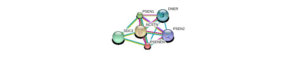 http://string-db.org/version_10/api/image/networkList?limit=0&targetmode=proteins&caller_identity=gene_cards&network_flavor=evidence&identifiers=9606.ENSP00000222266%0d%0a9606.ENSP00000326366%0d%0a9606.ENSP00000294785%0d%0a9606.ENSP00000355747%0d%0a9606.ENSP00000344468%0d%0a9606.ENSP00000345229%0d%0a