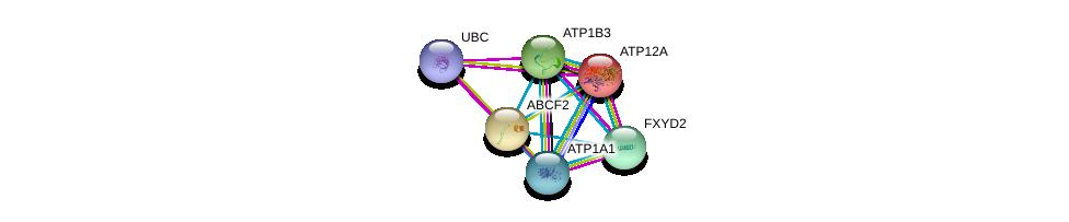 http://string-db.org/version_10/api/image/networkList?limit=0&targetmode=proteins&caller_identity=gene_cards&network_flavor=evidence&identifiers=9606.ENSP00000222388%0d%0a9606.ENSP00000344818%0d%0a9606.ENSP00000218548%0d%0a9606.ENSP00000286371%0d%0a9606.ENSP00000292079%0d%0a9606.ENSP00000295598%0d%0a