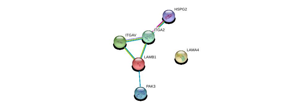 http://string-db.org/version_10/api/image/networkList?limit=0&targetmode=proteins&caller_identity=gene_cards&network_flavor=evidence&identifiers=9606.ENSP00000222399%0d%0a9606.ENSP00000353864%0d%0a9606.ENSP00000261023%0d%0a9606.ENSP00000363827%0d%0a9606.ENSP00000296585%0d%0a9606.ENSP00000230538%0d%0a
