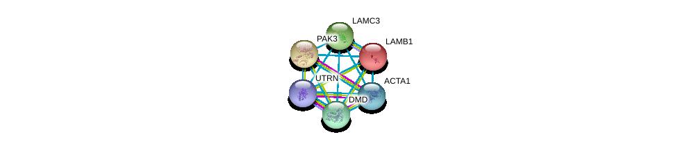 http://string-db.org/version_10/api/image/networkList?limit=0&targetmode=proteins&caller_identity=gene_cards&network_flavor=evidence&identifiers=9606.ENSP00000222399%0d%0a9606.ENSP00000353864%0d%0a9606.ENSP00000354360%0d%0a9606.ENSP00000354923%0d%0a9606.ENSP00000355645%0d%0a9606.ENSP00000356515%0d%0a