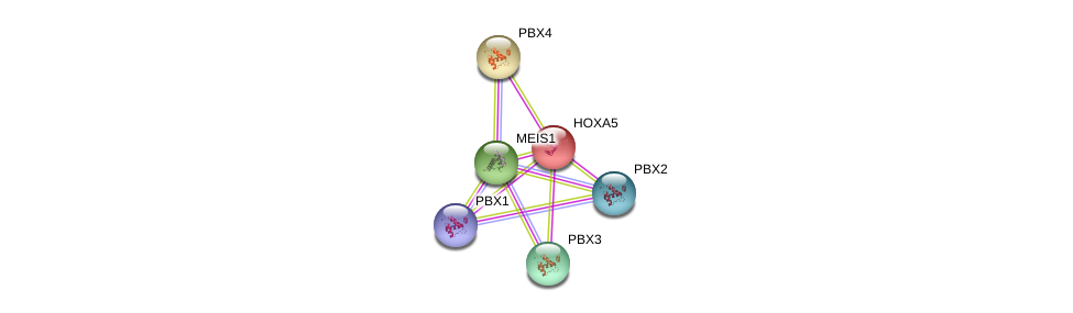 http://string-db.org/version_10/api/image/networkList?limit=0&targetmode=proteins&caller_identity=gene_cards&network_flavor=evidence&identifiers=9606.ENSP00000222726%0d%0a9606.ENSP00000405890%0d%0a9606.ENSP00000251203%0d%0a9606.ENSP00000362588%0d%0a9606.ENSP00000364190%0d%0a9606.ENSP00000272369%0d%0a